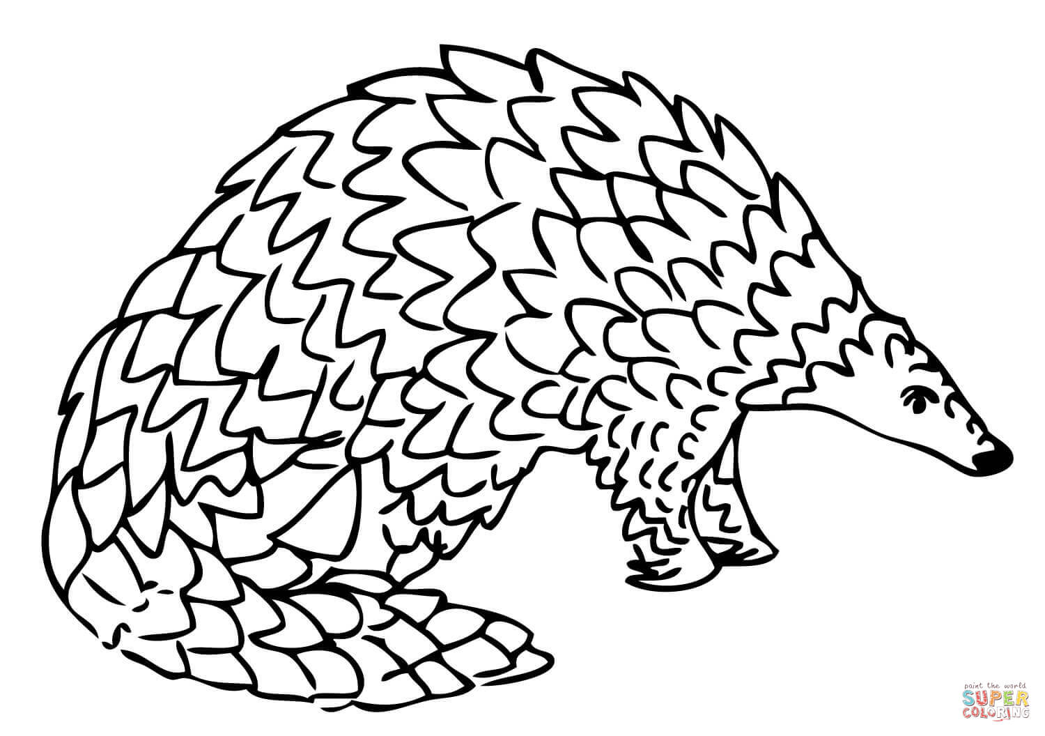 Labeled Body Parts Coloring Pages Coloring Pages