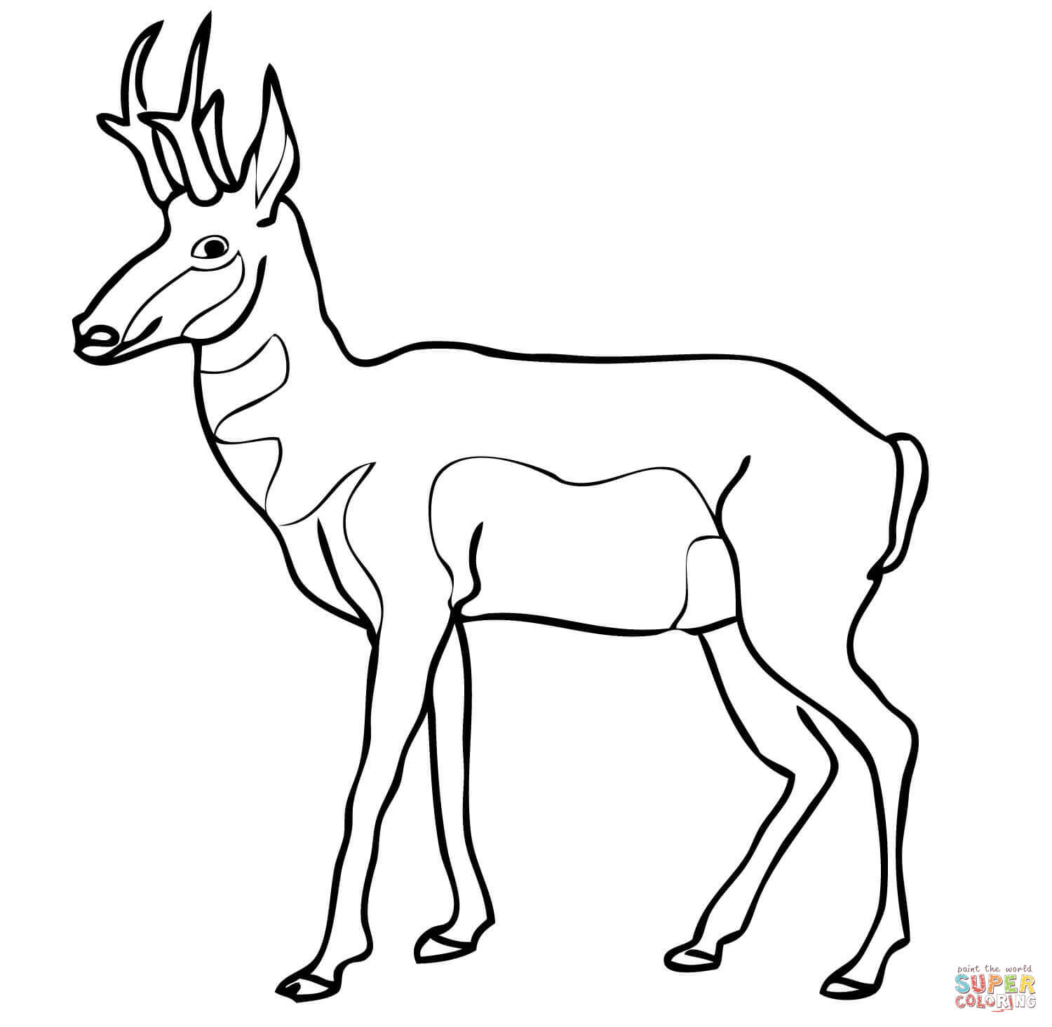 Pronghorn North American Antelope Coloring Page
