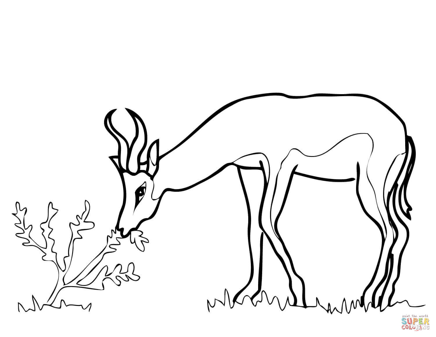 Gazelle Outline Coloring Page Coloring Pages