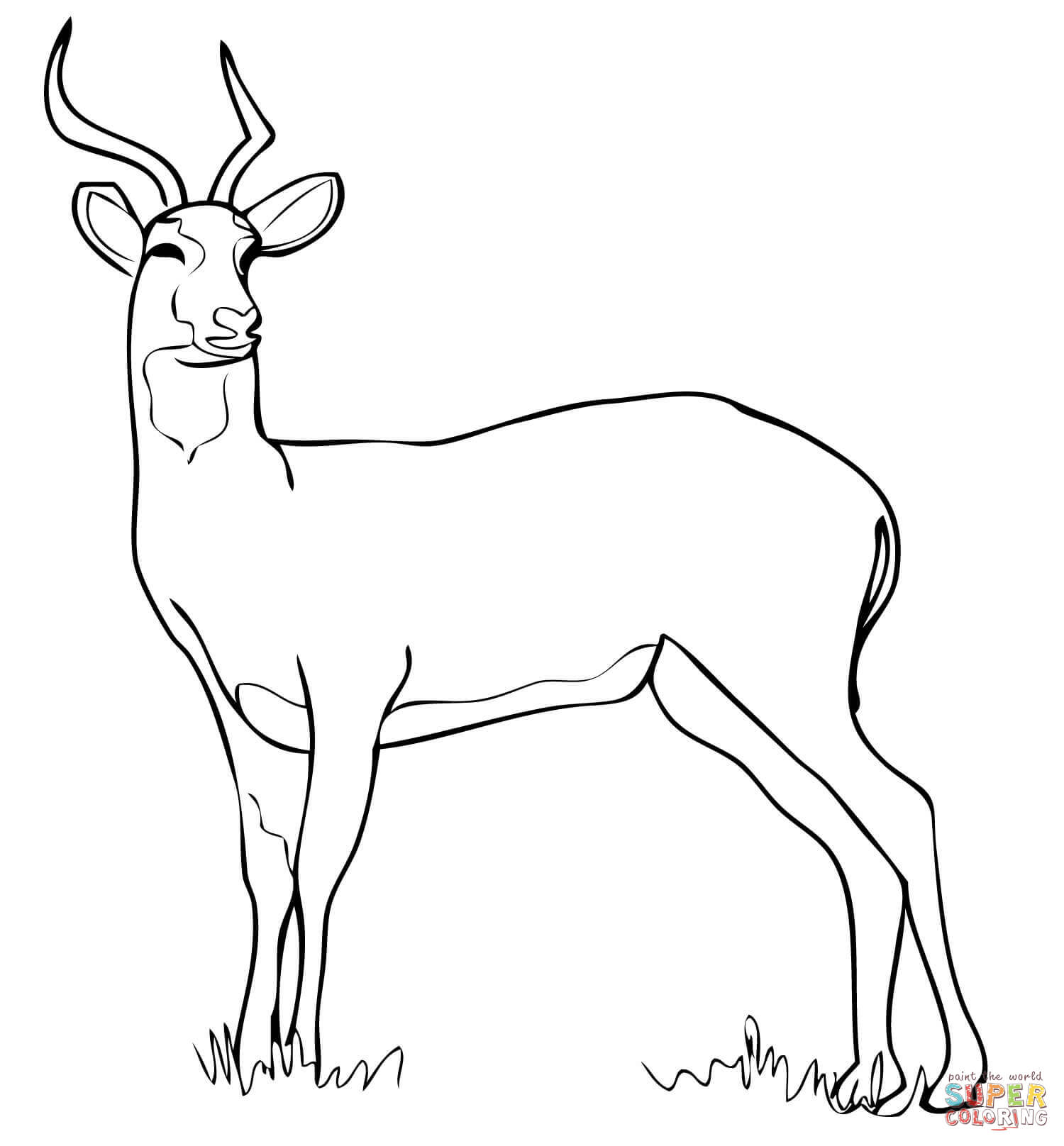 Antelope Head Coloring Coloring Pages
