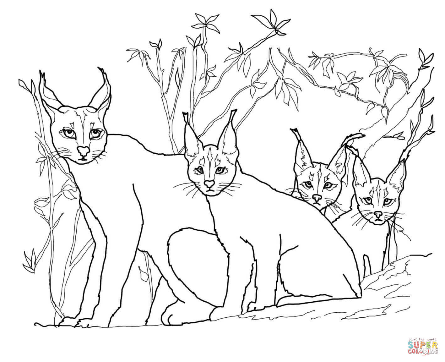 Caracal Kittens And Mother Coloring Page