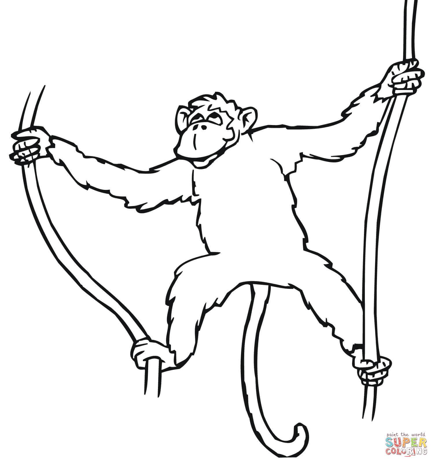 Ausmalbild Affe Hangt Von Der Liane