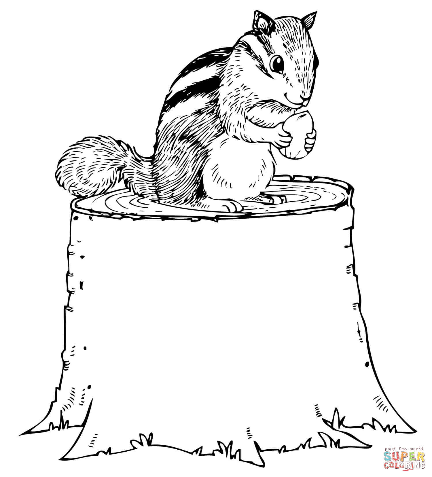 Chipmunk Eating Nut On Tree Stump Coloring Page