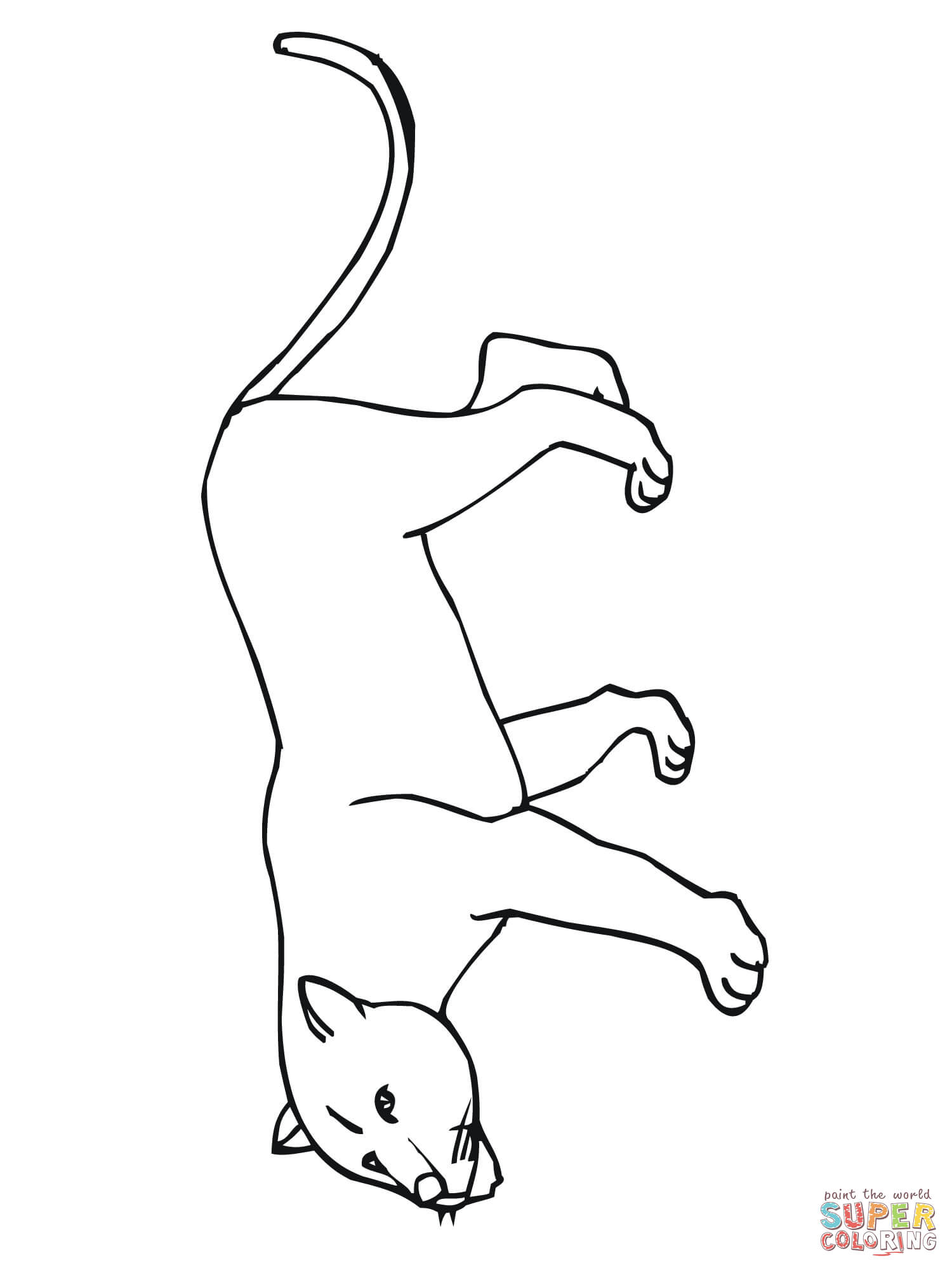 Mountain Lion Printable Coloring Pages