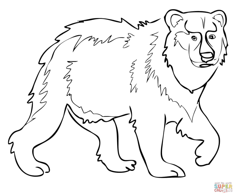 Eurasian Brown Bear Coloring Page