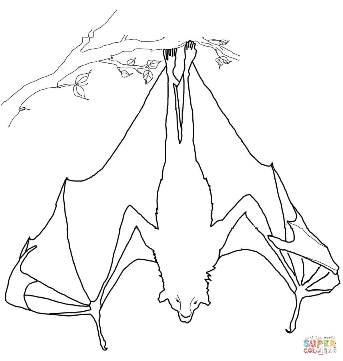 Flying Fox Hanging Upside Down Coloring Page