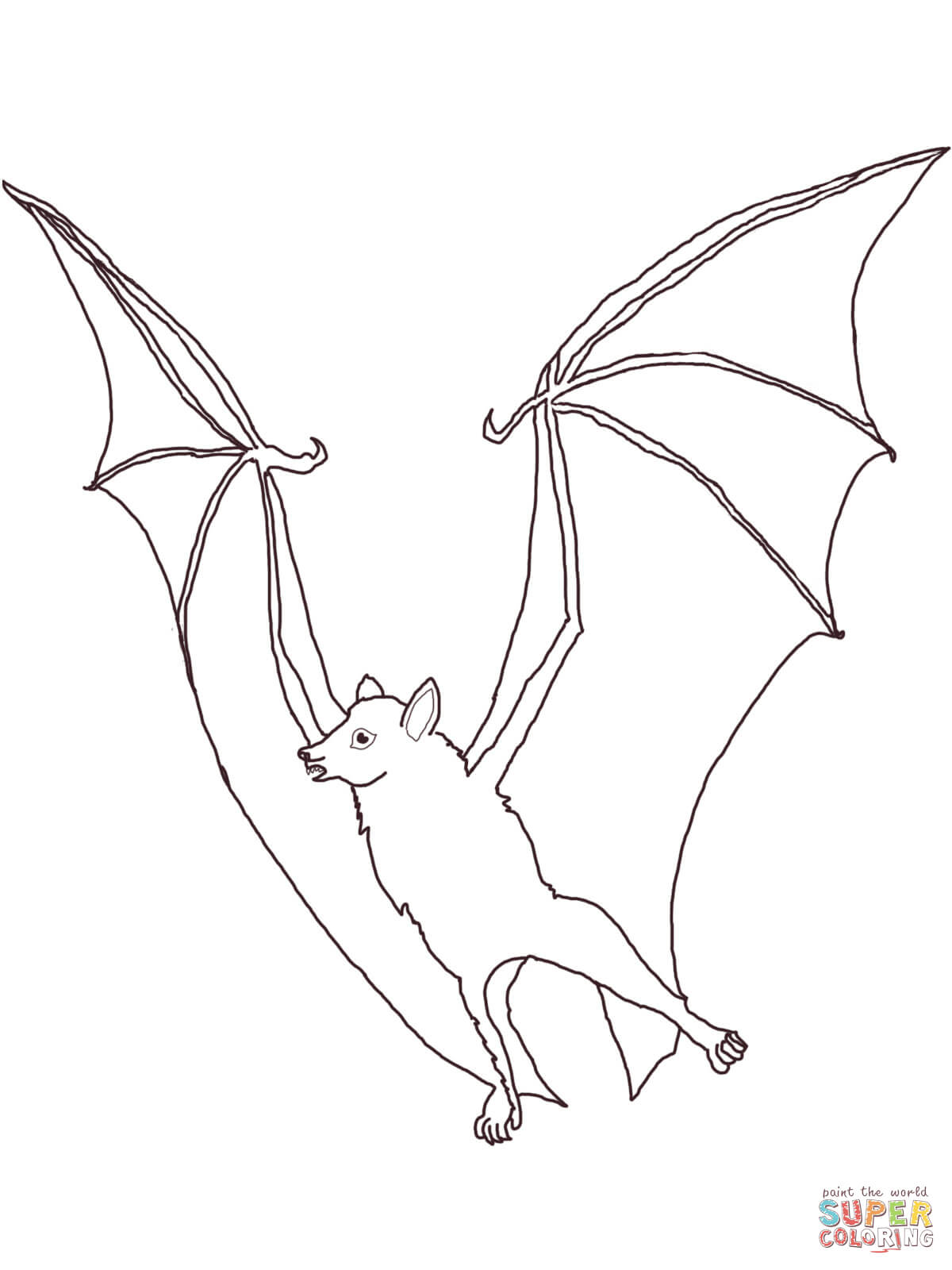 Megabat Flying Fox Coloring Page