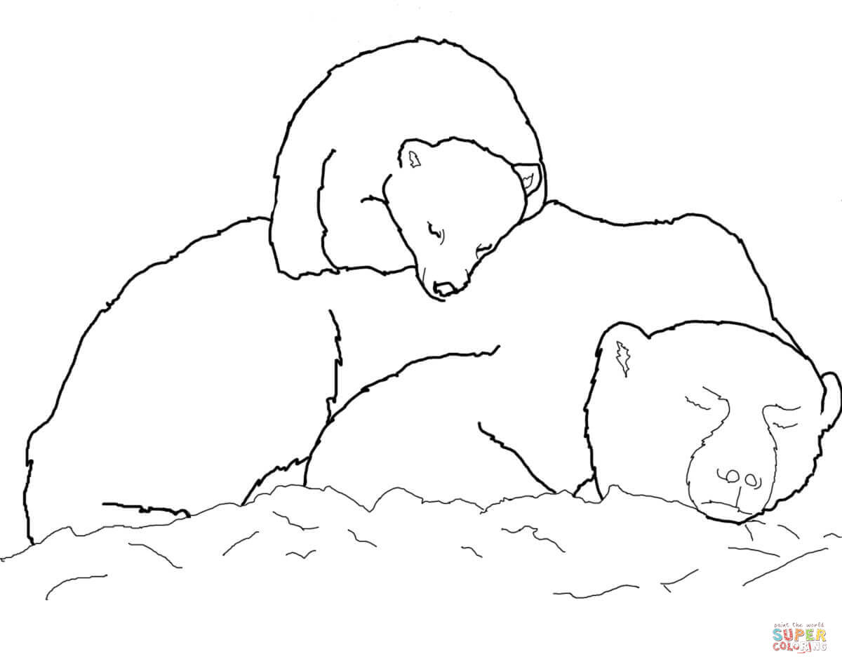 Polar Bear Cub Sleeping On Mother S Back Coloring Page