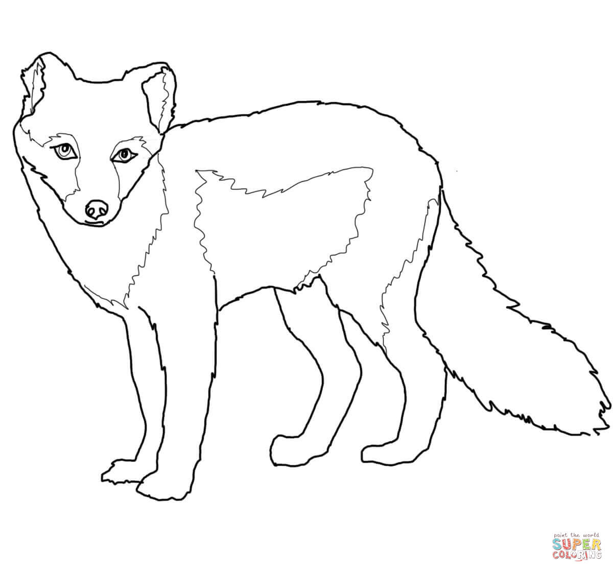 Arctic Fox Summer Coat Coloring Page