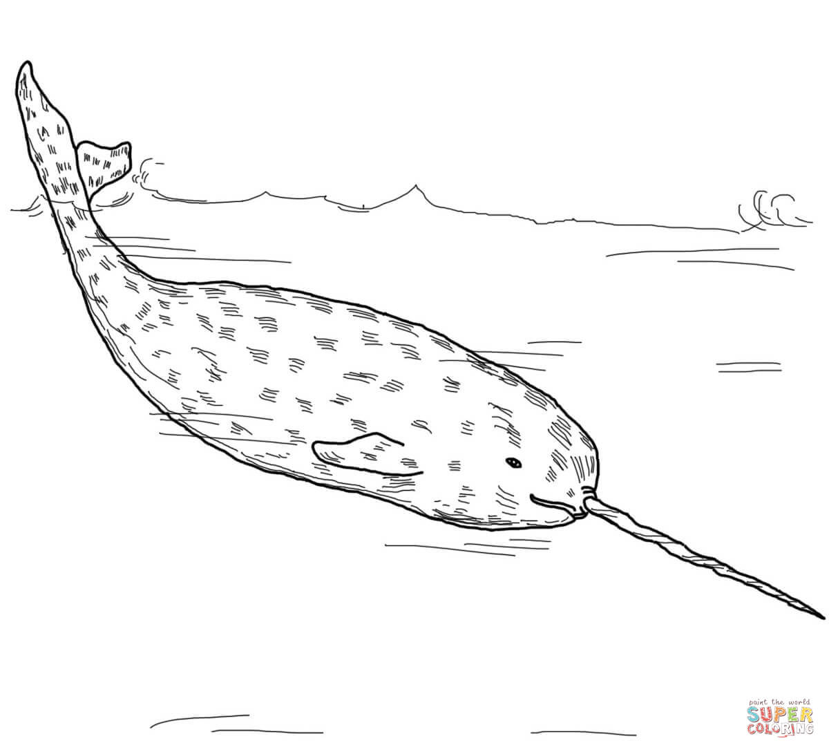 Arctic Whale Narwhal Coloring Page