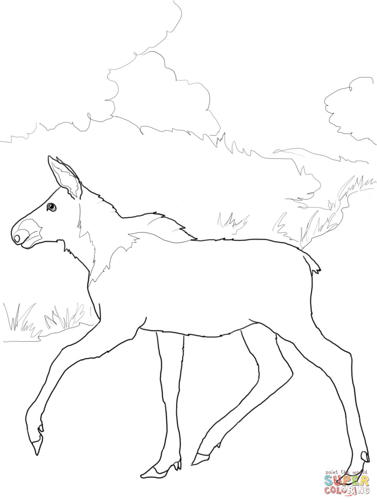 Baby Moose Coloring Page