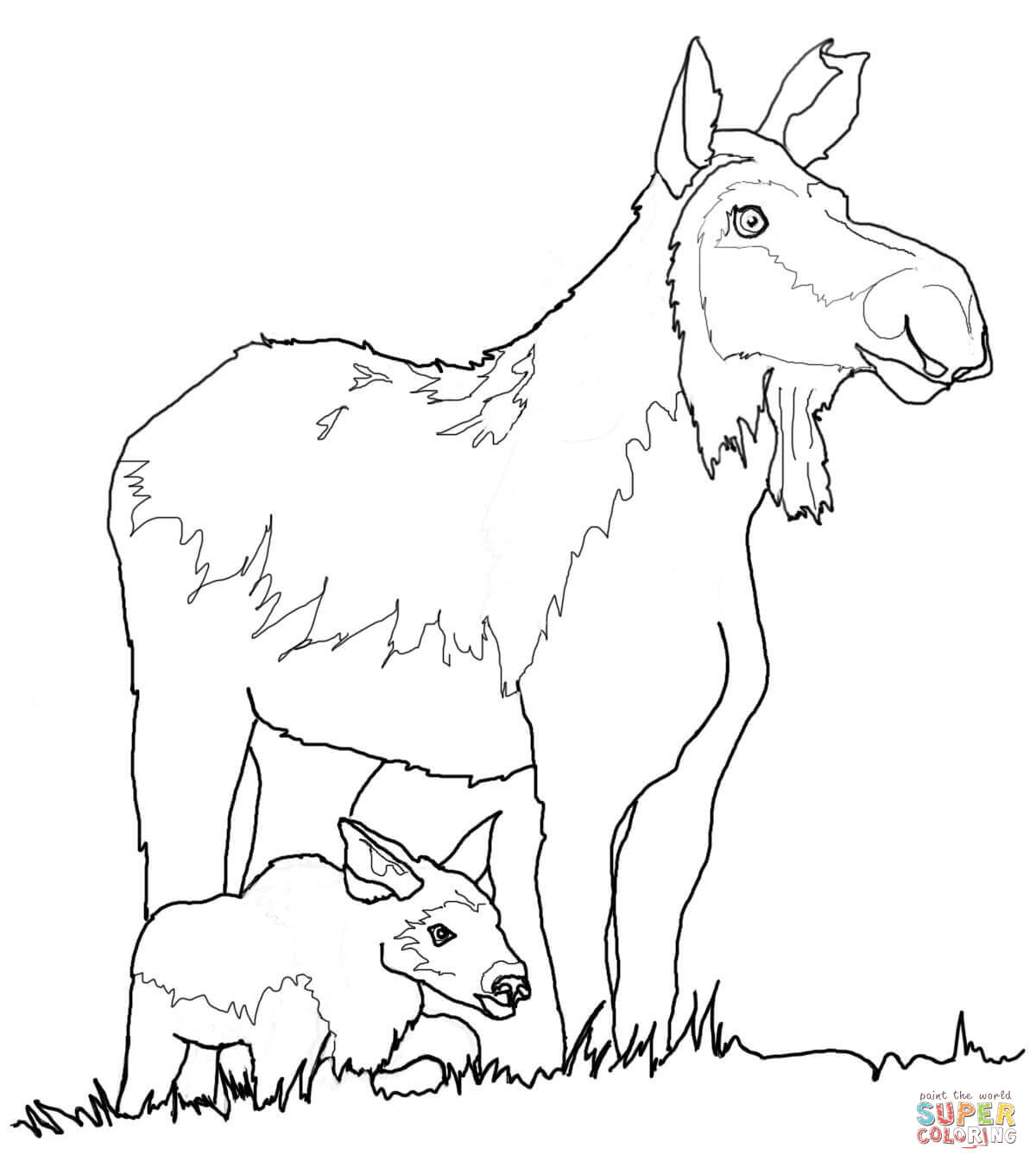 Cow Moose And Calf Coloring Page