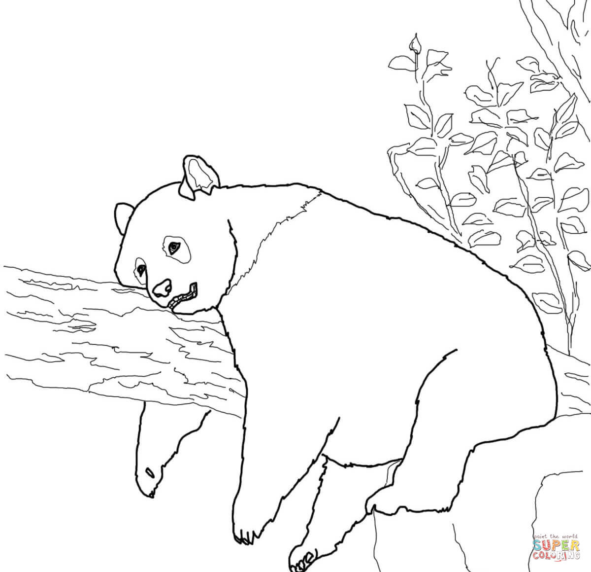 Panda Printable Coloring Pages Coloring Pages