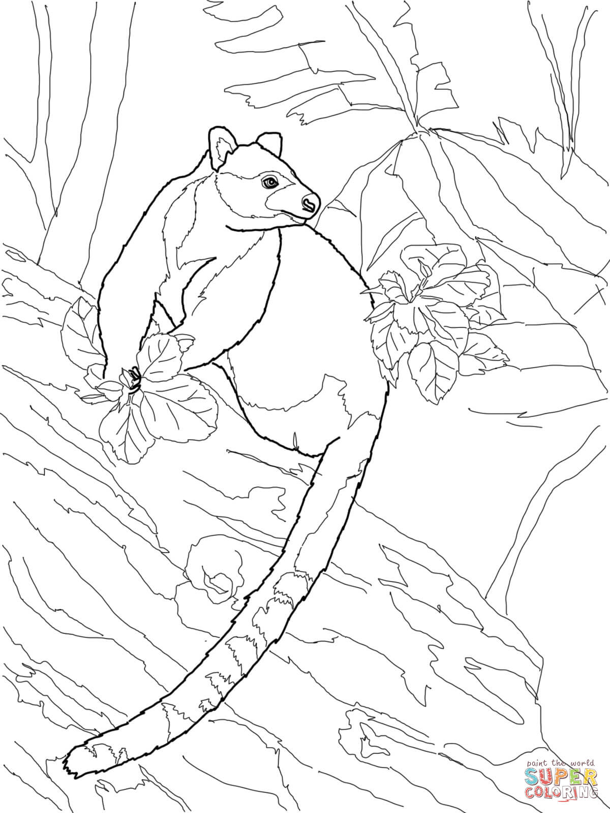 Coloring Kangaroo Coloring Face Coloring Pages