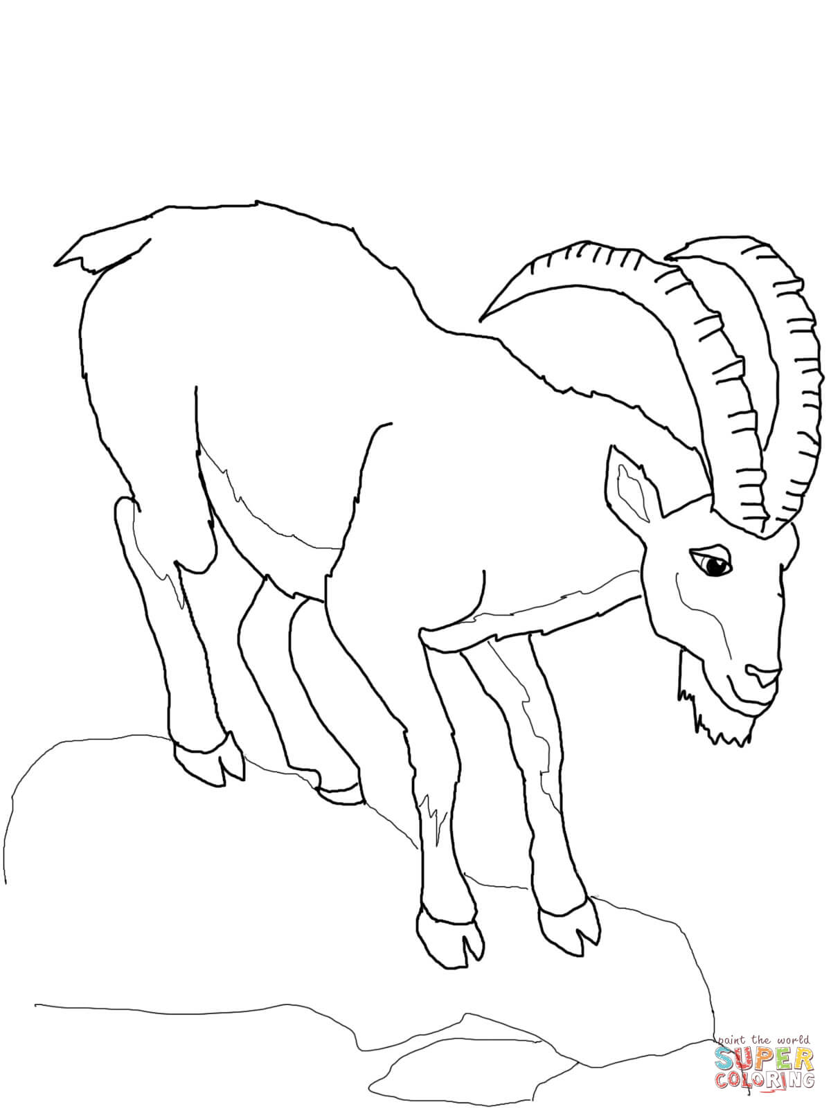 Ibex Coloring Page