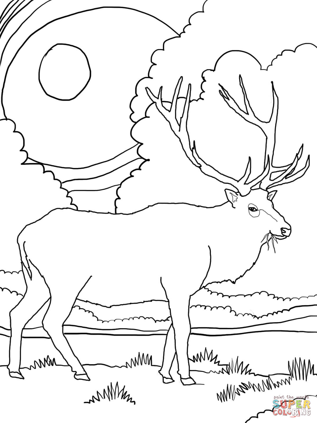 Rocky Mountain Elk Coloring Page