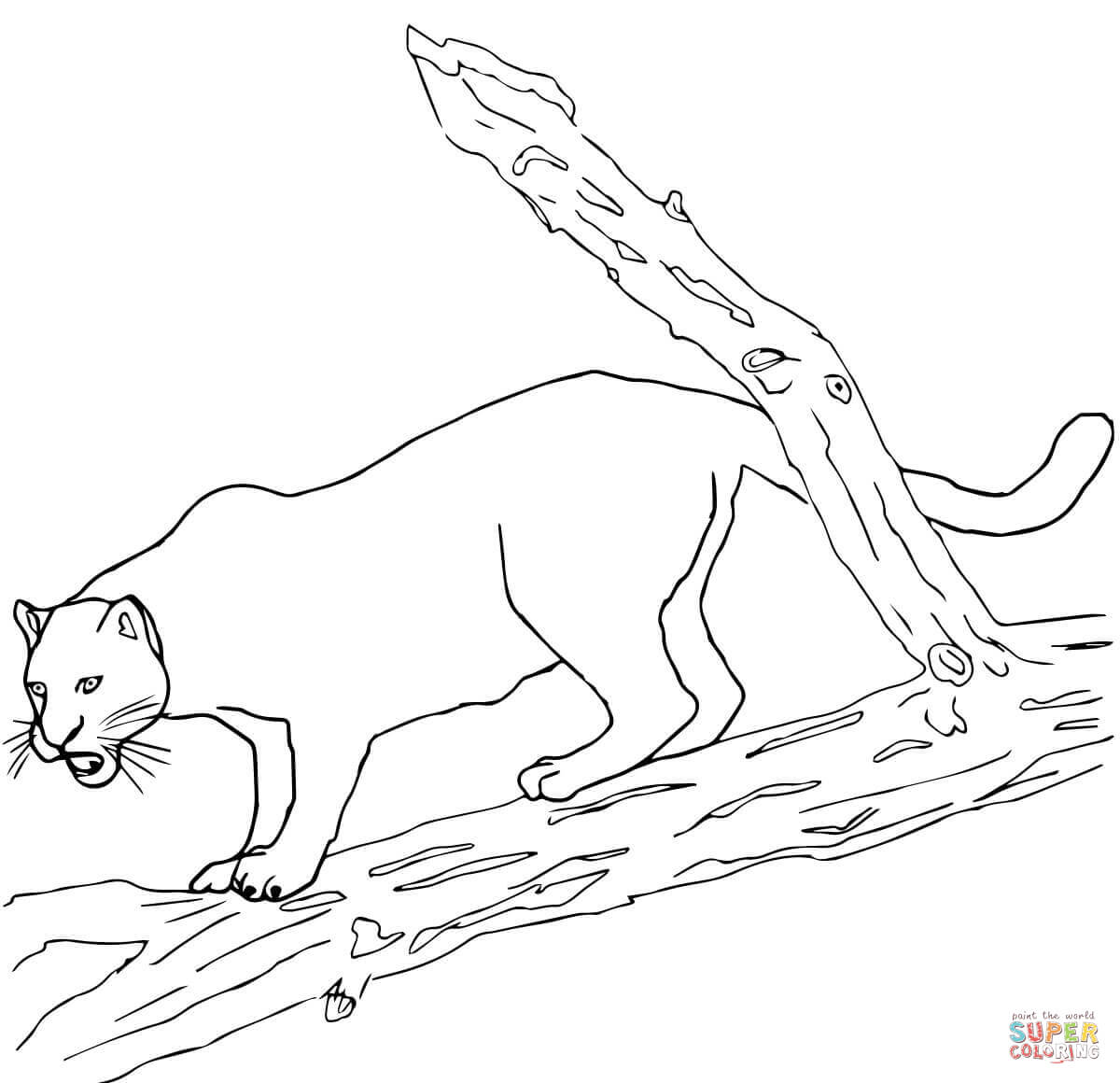 Jaguars Coloring Pages Free Coloring Pages