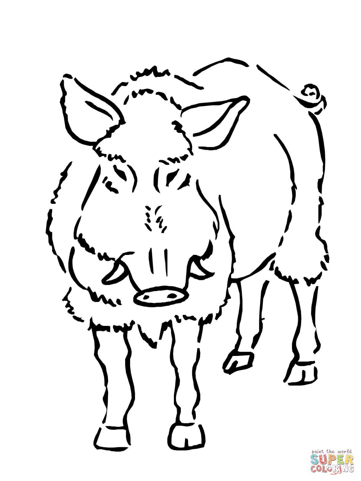 Ausmalbild Wildschwein