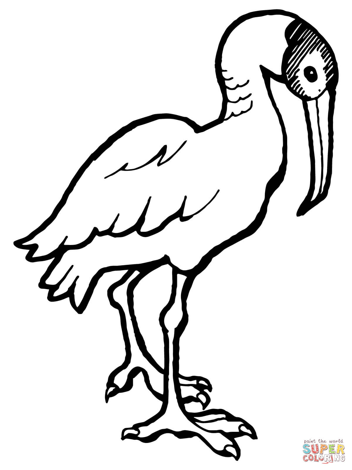 Ibis Coloring Page