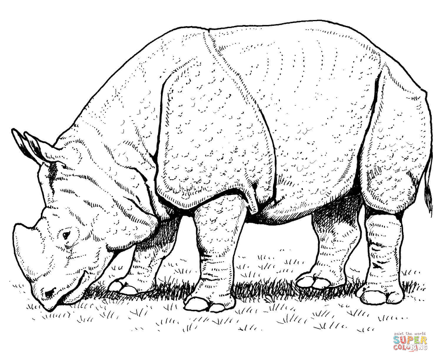 Indian Rhino Coloring Page Free Printable Coloring Pages