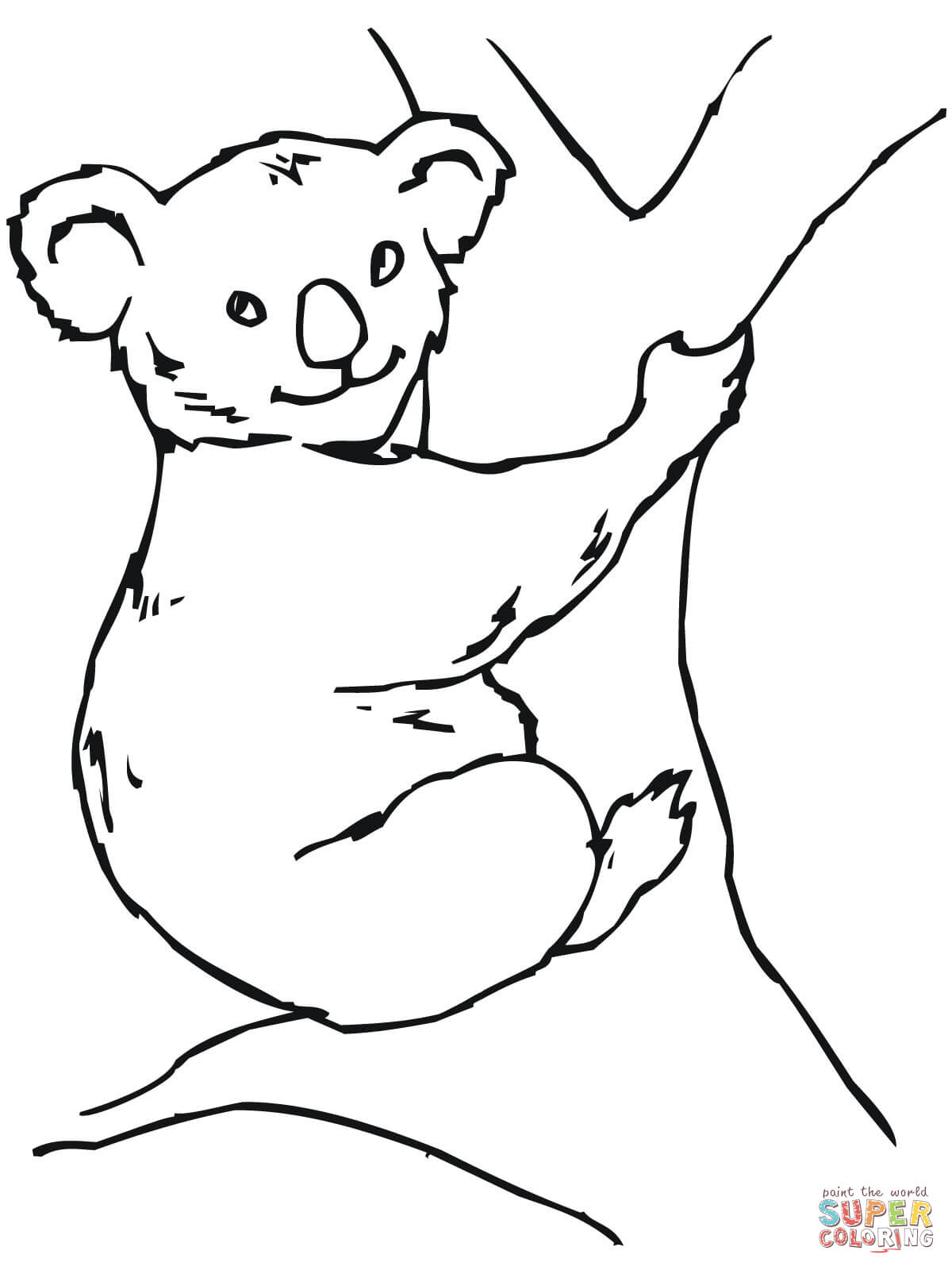 Kolorowanka Mi Koala