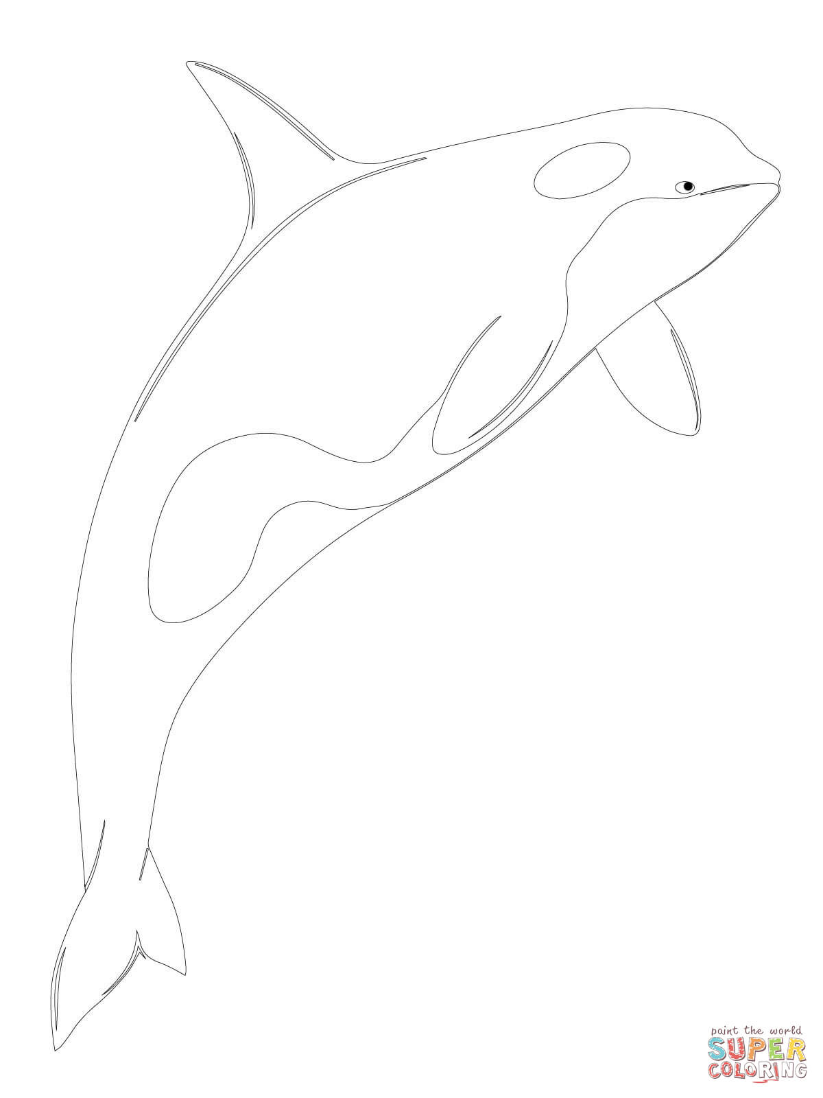 Orca Whale Shamu Coloring Page