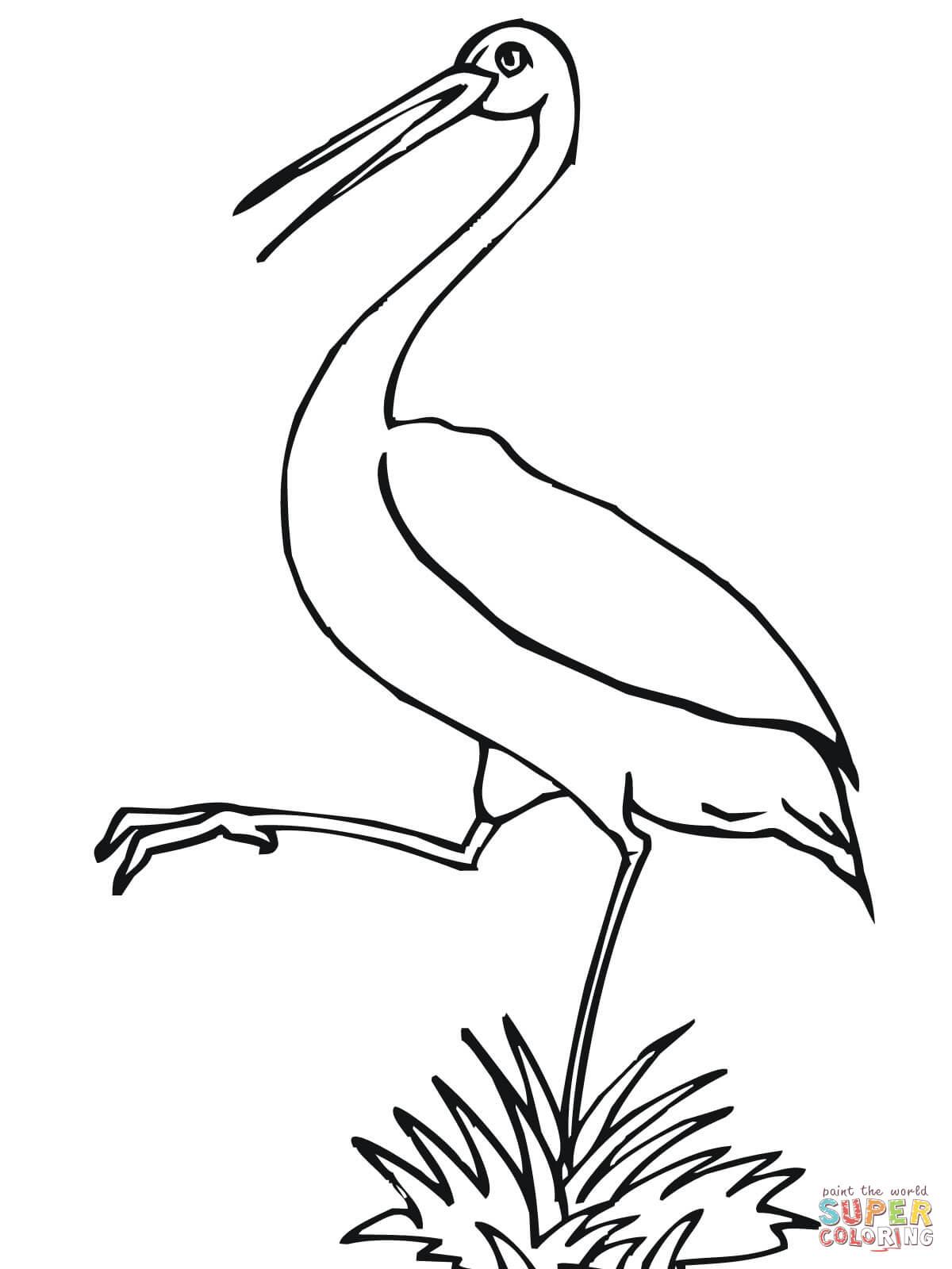 Storch Zum Ausmalen