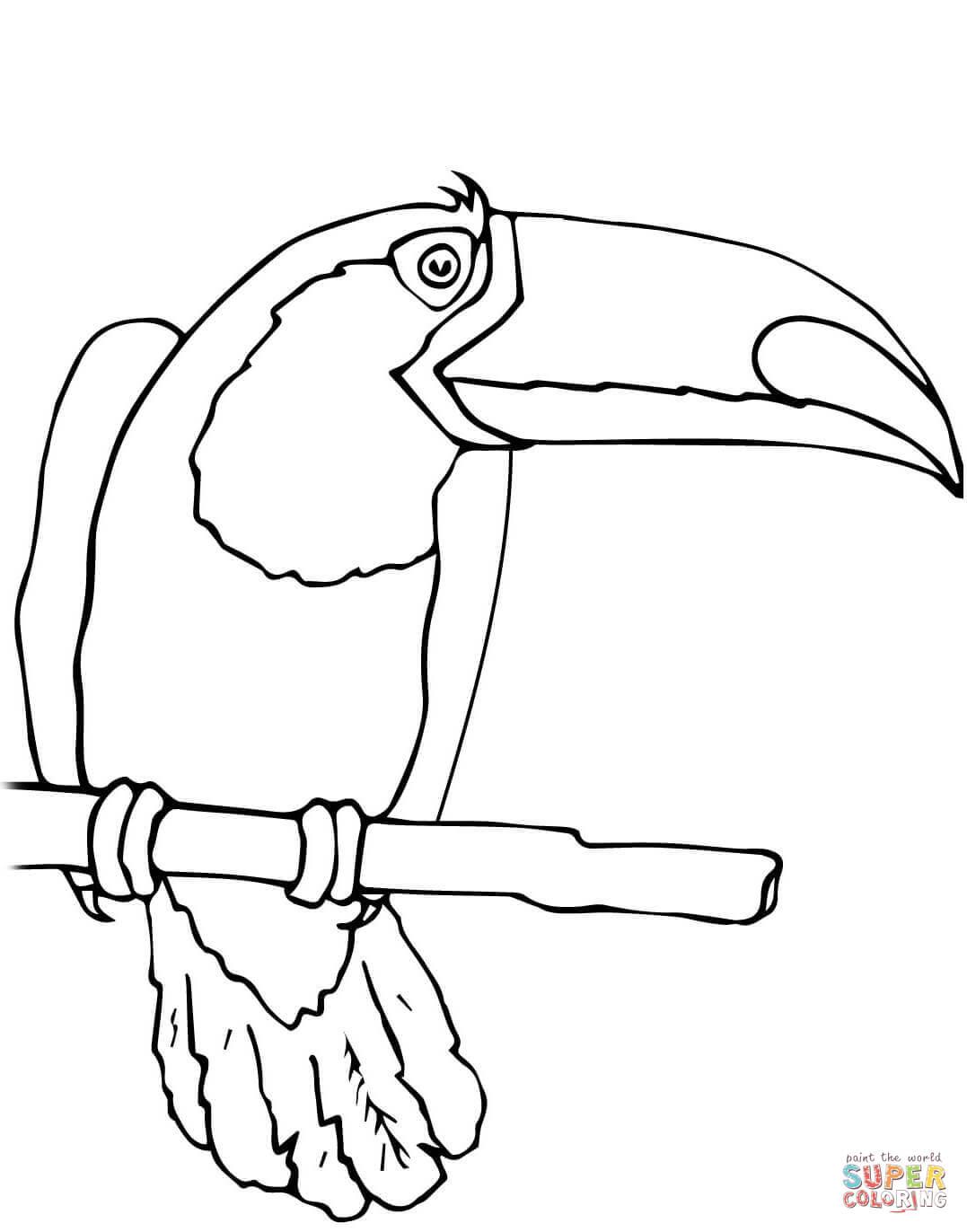 Parrot Coloring Worksheet