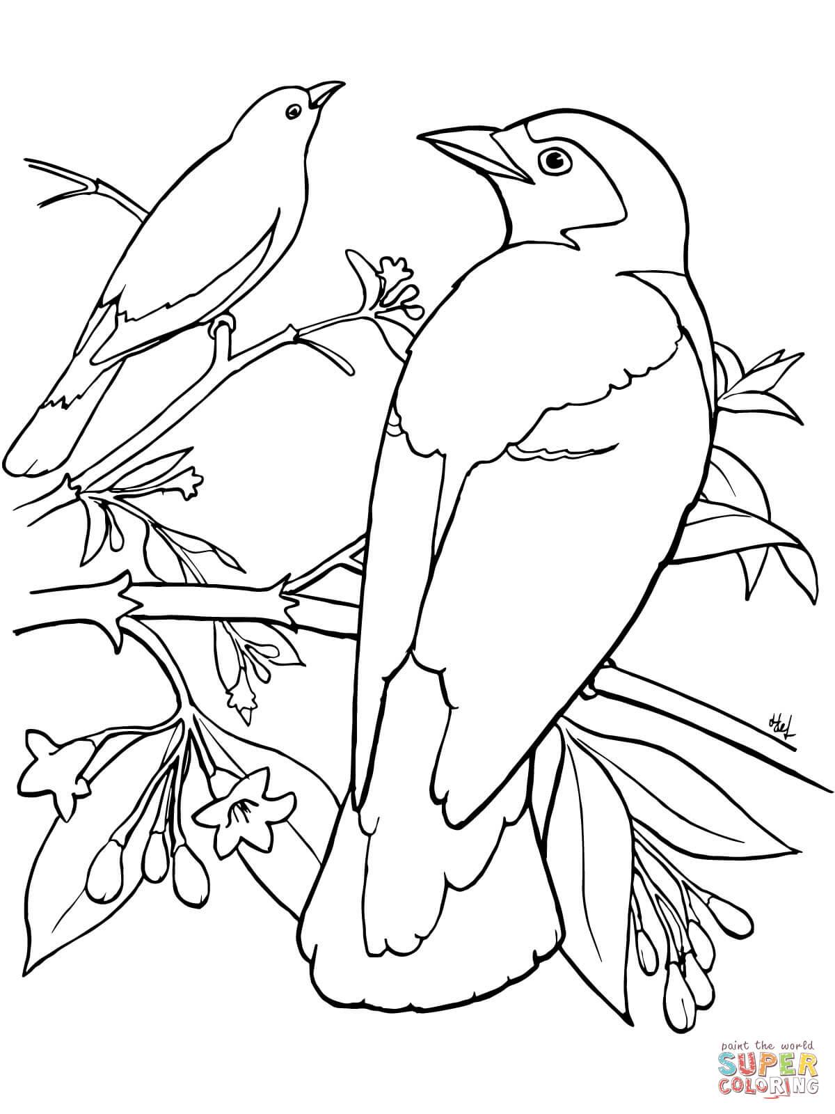 Desenho De Dois Passaros Azuis Empoleirados Em Uma Arvore