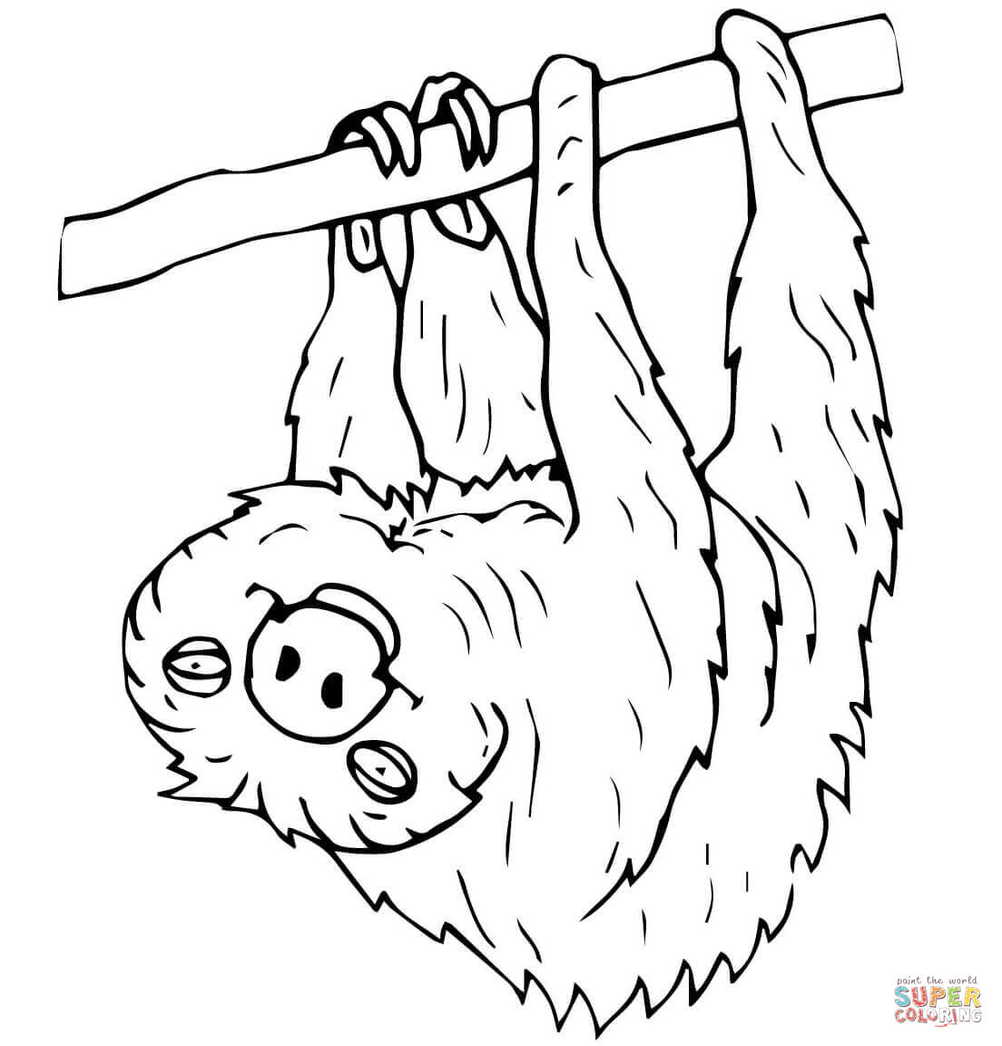 Two Toed Sloth Coloring Page