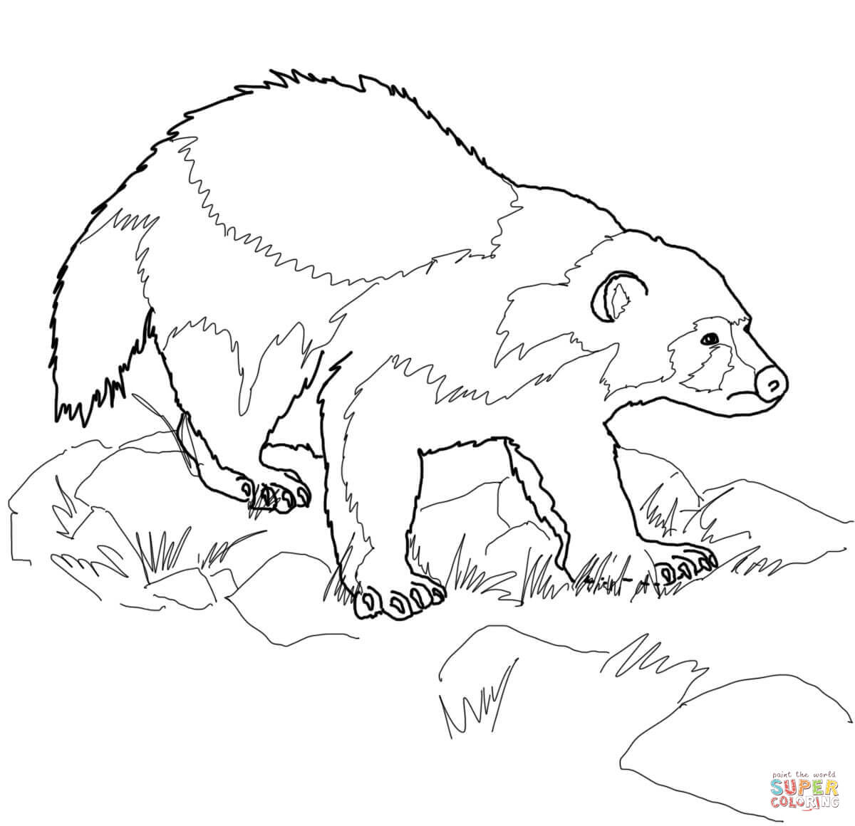 Wolverine Animal Coloring Page