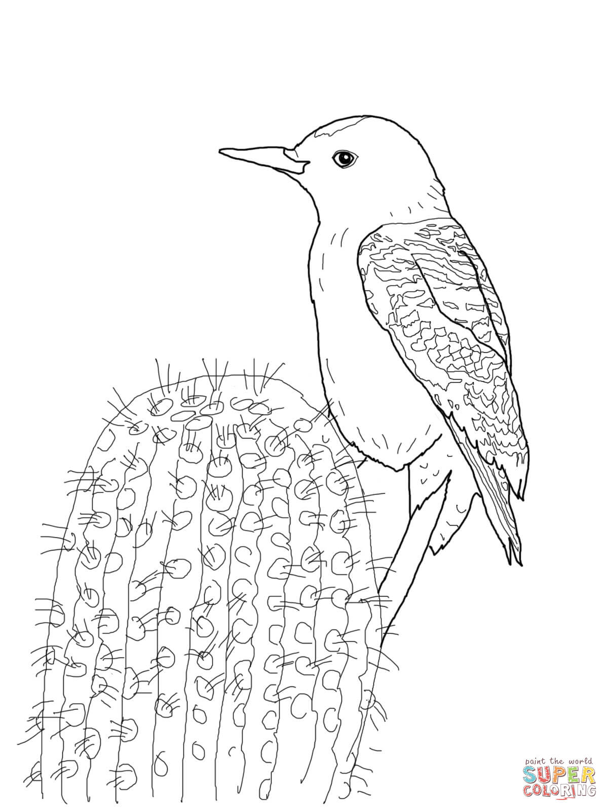 Gila Woodpecker Coloring Page
