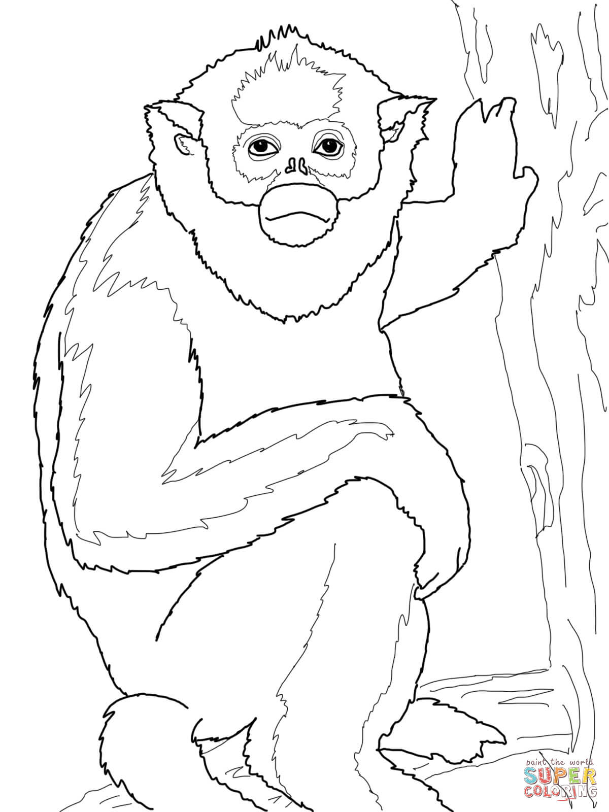 Golden Monkey Coloring Page