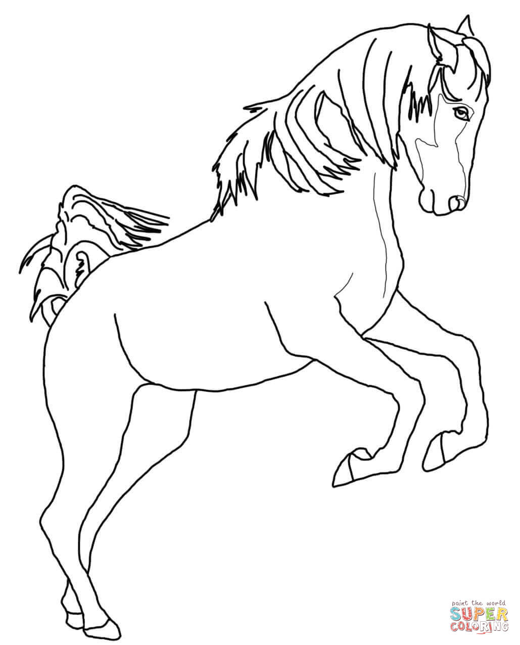 Free Coloring Pages Download Running Arabian Horse Page Printable Of