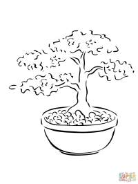 Bonsai Miniature Tree coloring page | Free Printable ...