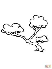 Bonsai Tree coloring page | Free Printable Coloring Pages
