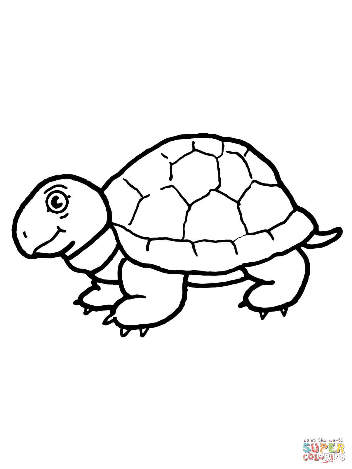 Cute Tortoise Coloring Page