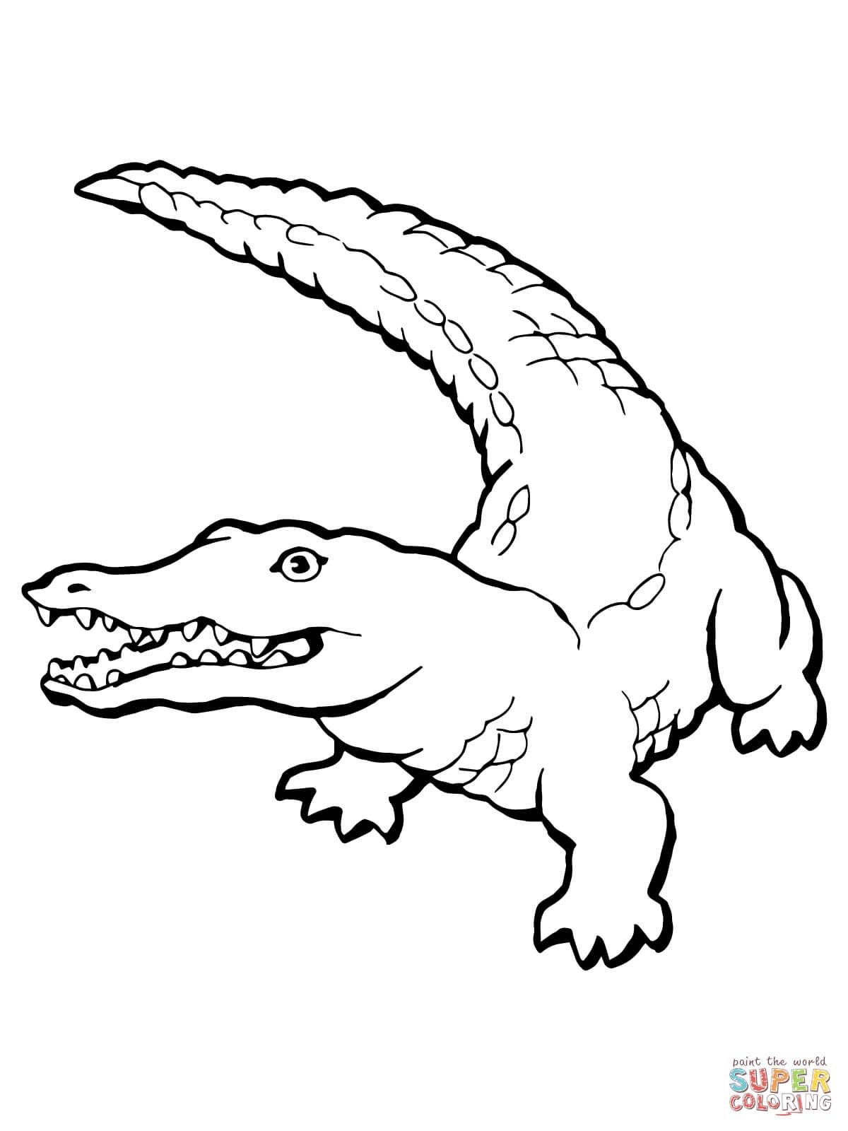 Kolorowanka Realistyczny Krokodyl