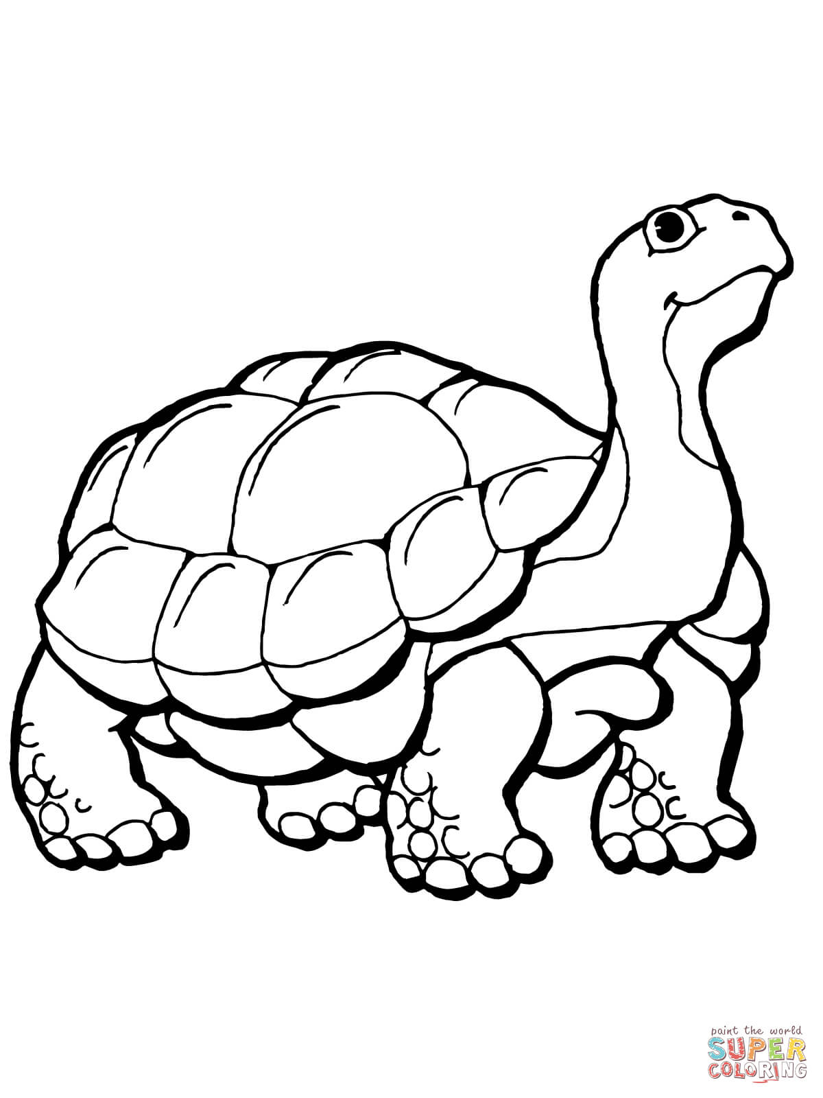 Tortoise Coloring Page
