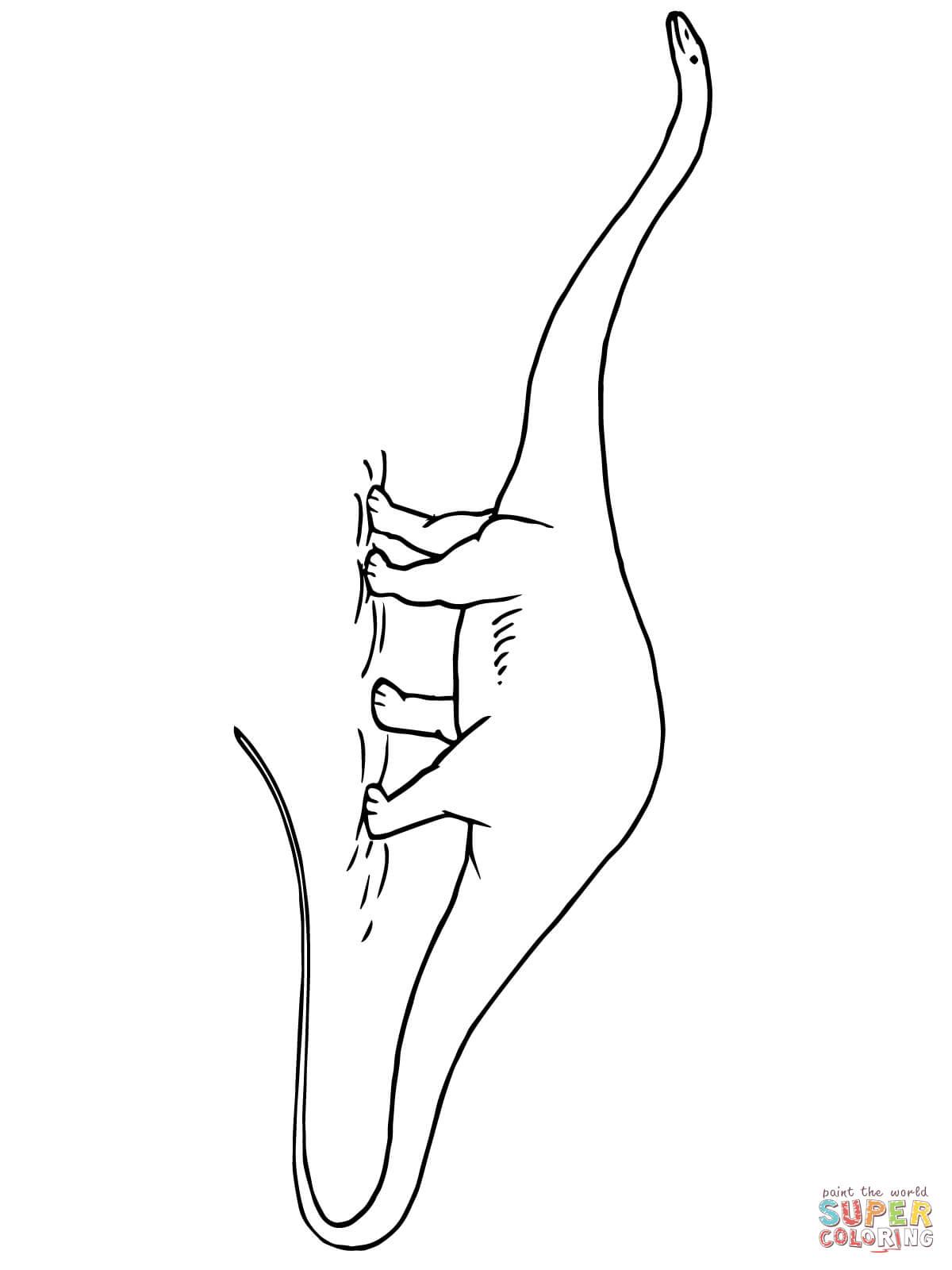 Diplodocus Jurassic Dinosaur Coloring Page Free