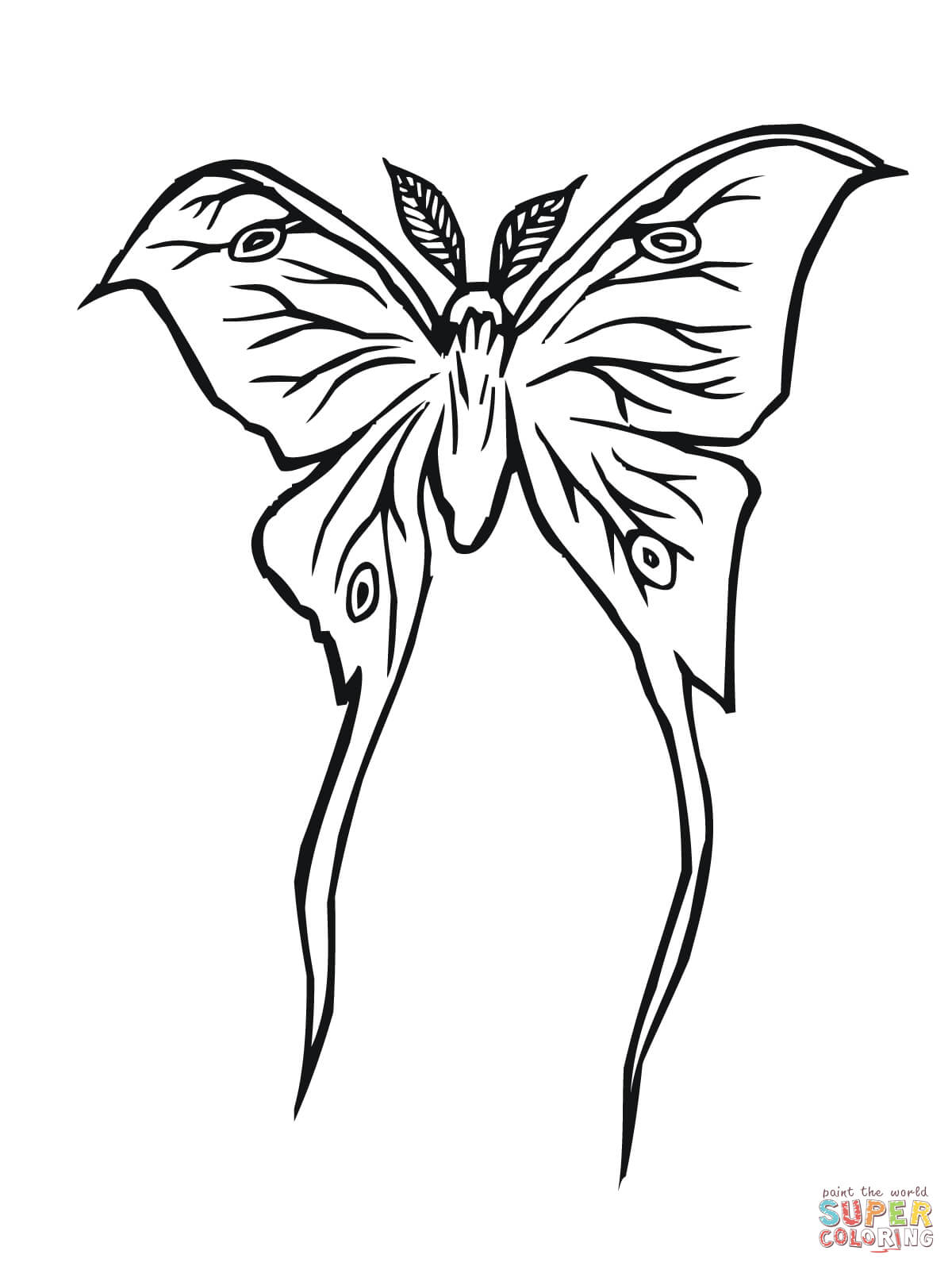 Luna Moth Coloring Page Free Printable Coloring Pages