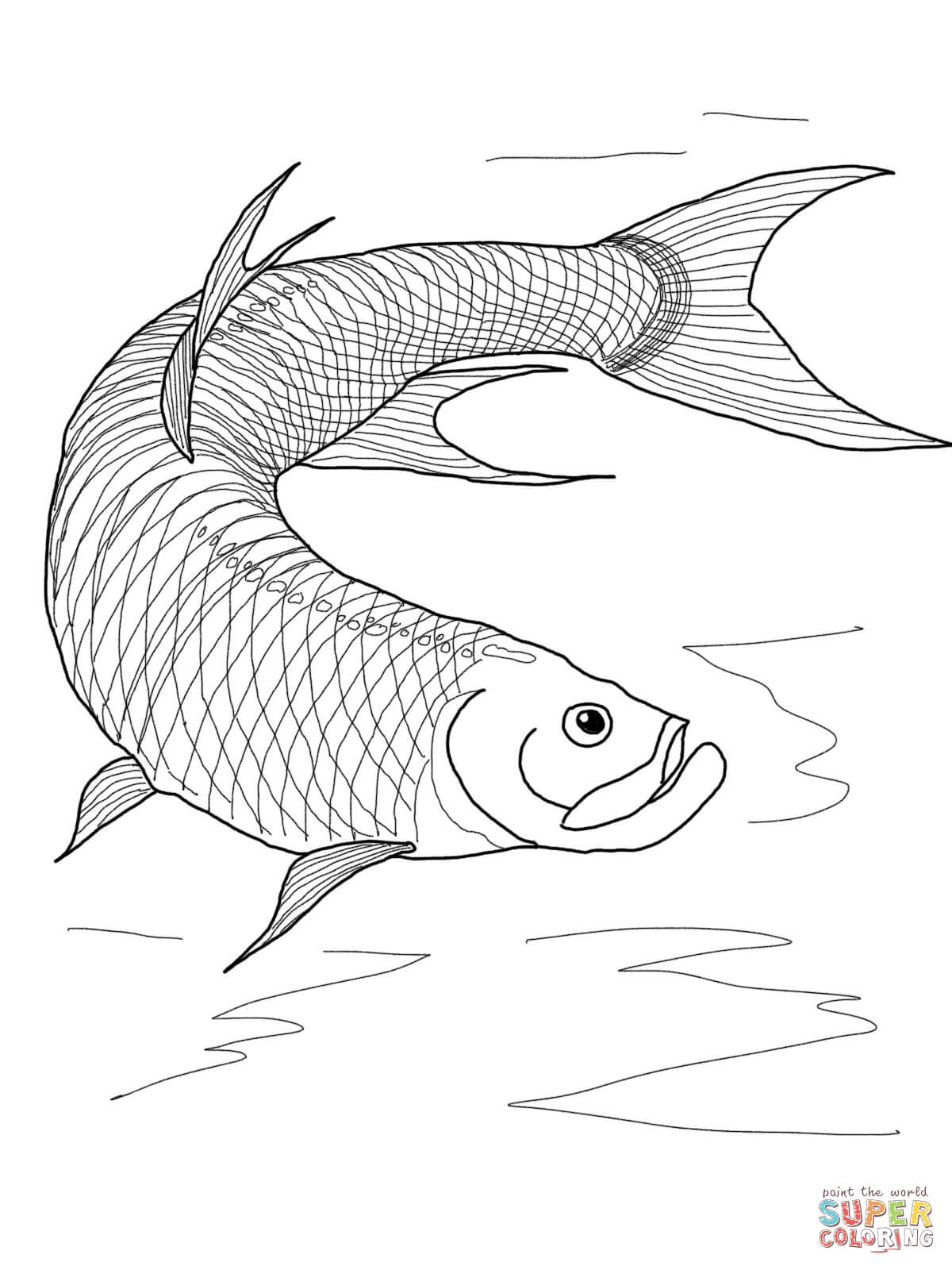Tarpon Fish Coloring Page