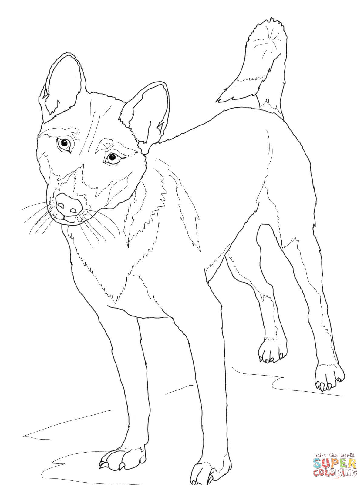 New Guinea Singing Dog Coloring Page