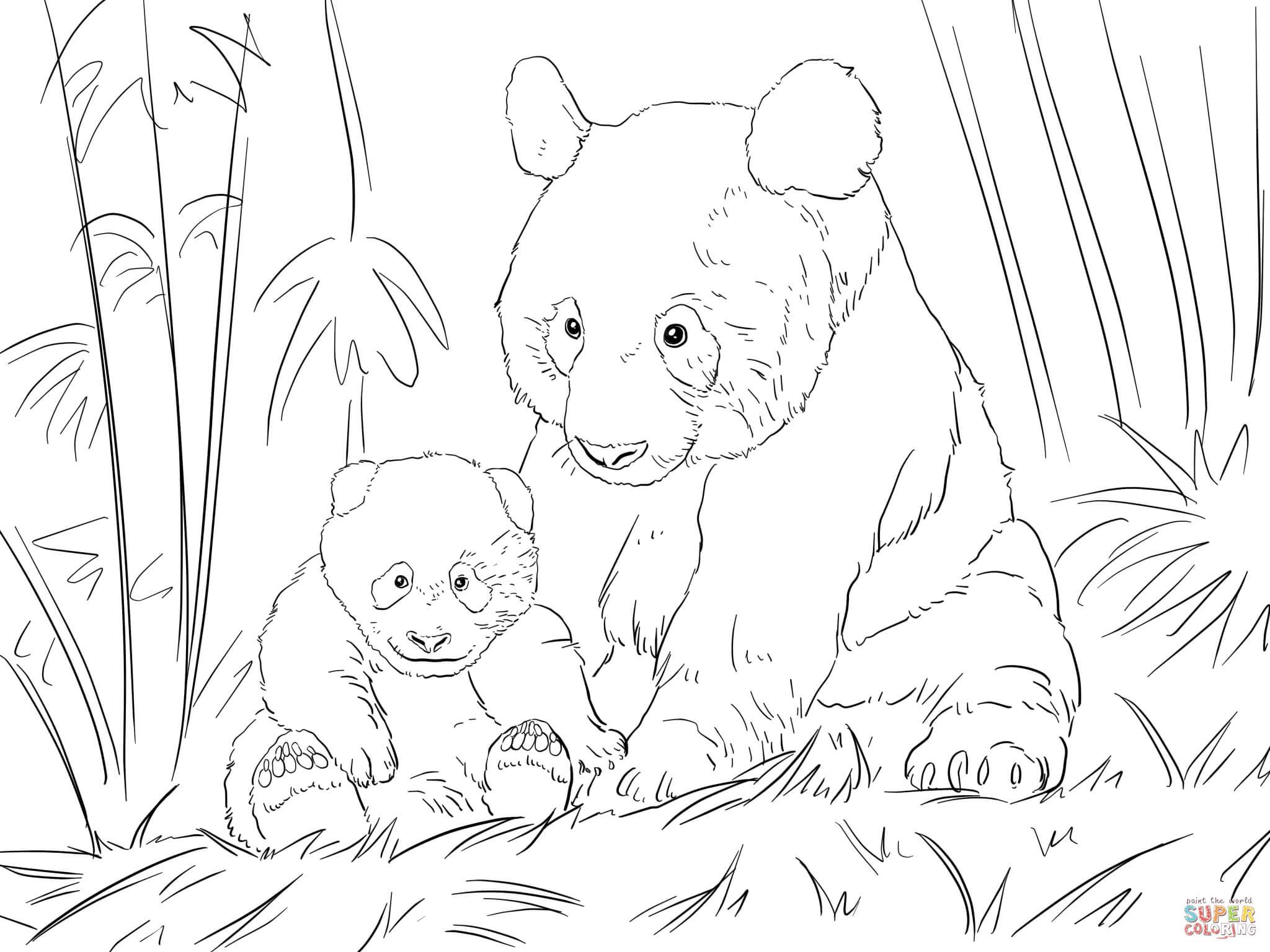 Schattige Pandafamilie Kleurplaat