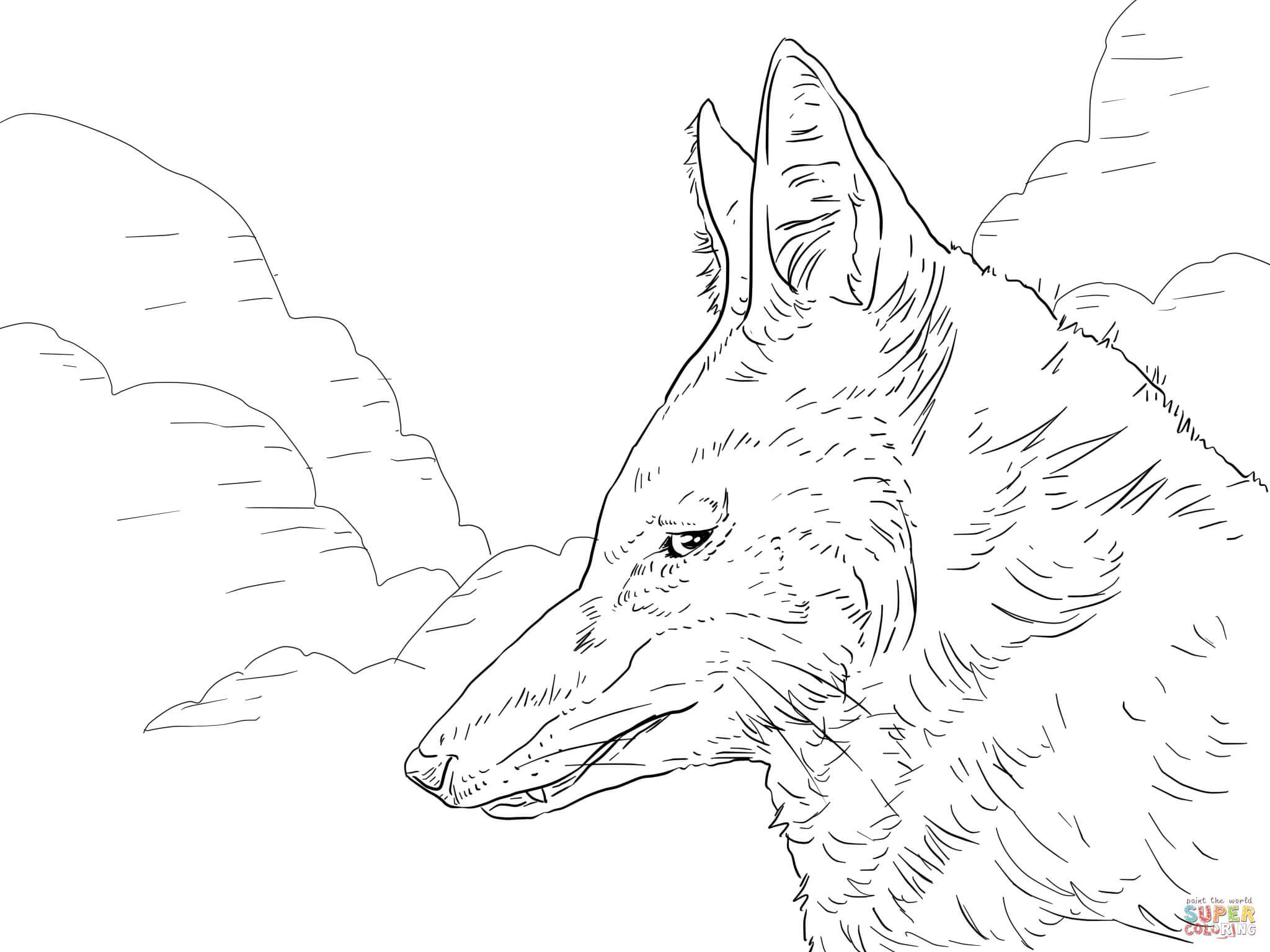 Dibujo de Cabeza de Lobo Etíope o Abisinio para colorear