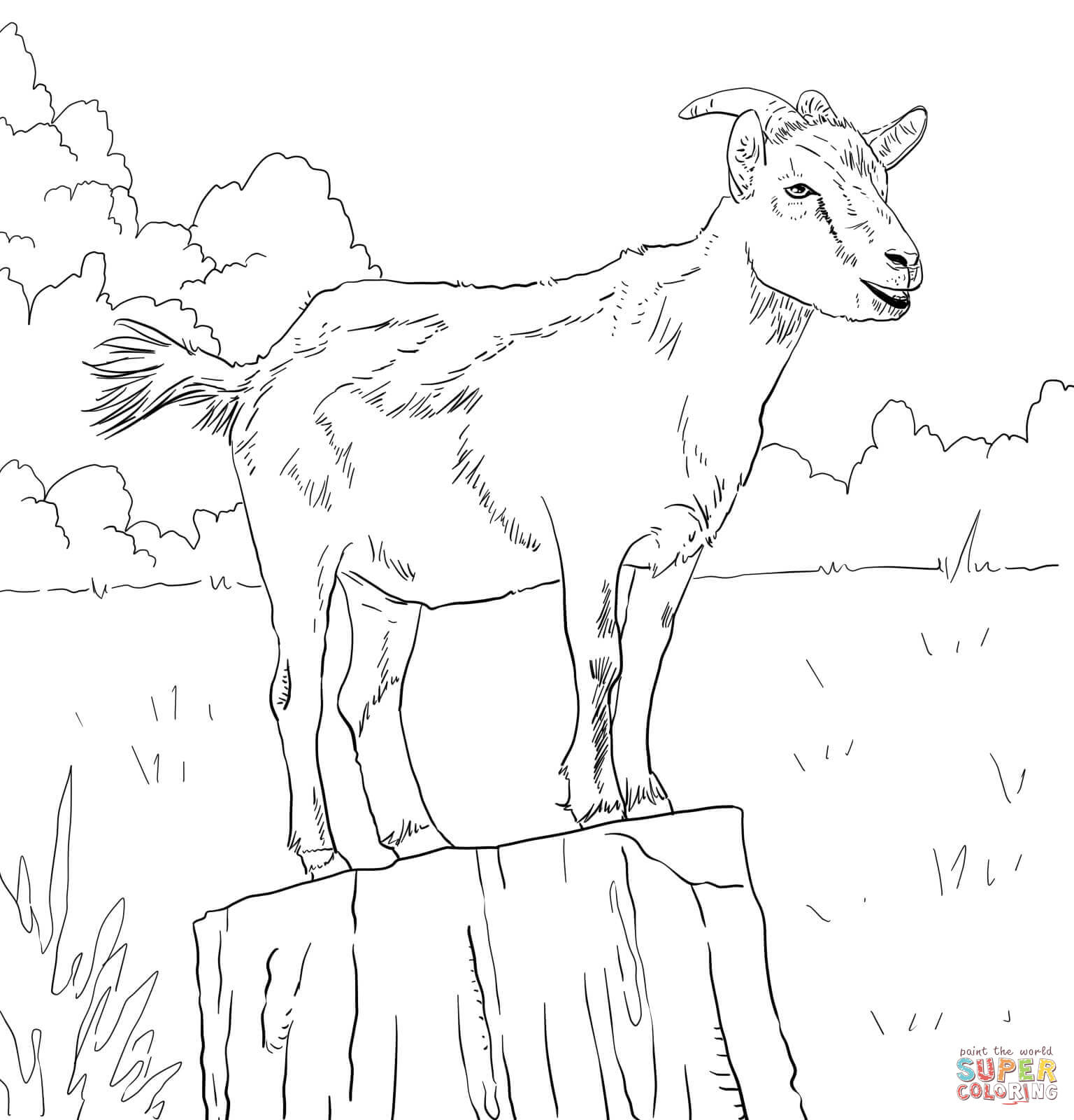 Realistic Domestic Goat Coloring Page