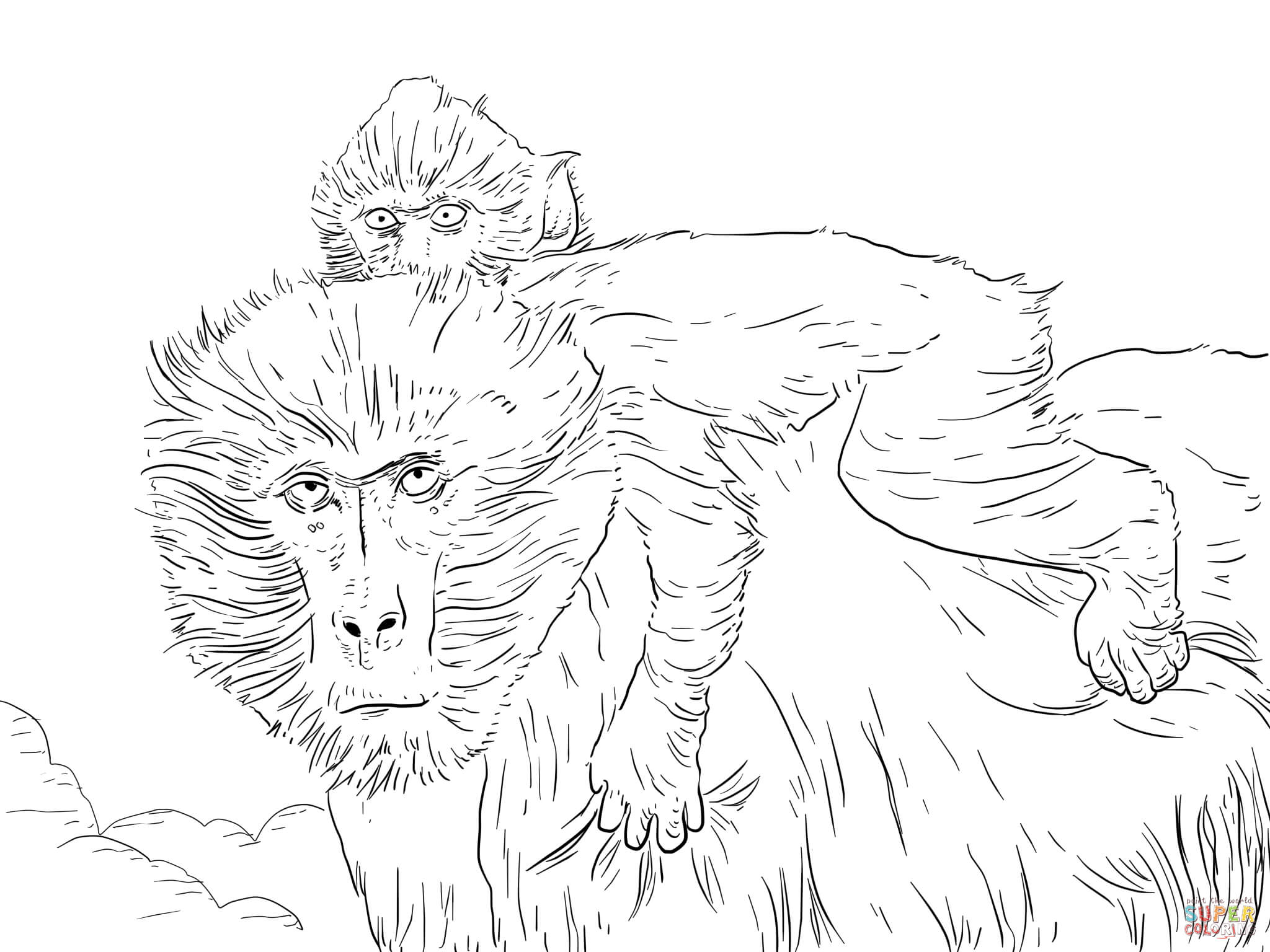 Mother And Baby Baboon Coloring Page