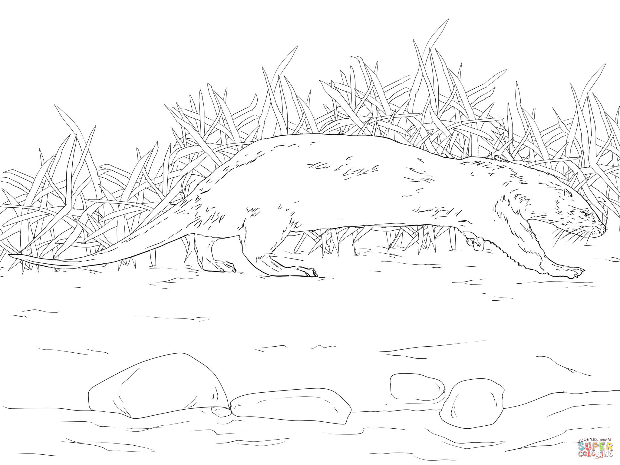 River Printable Coloring Pages