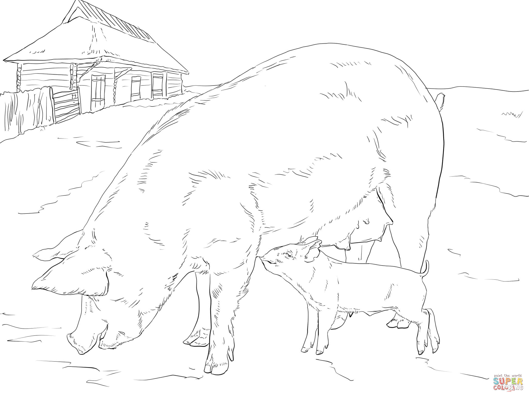 Pig Family Coloring Page