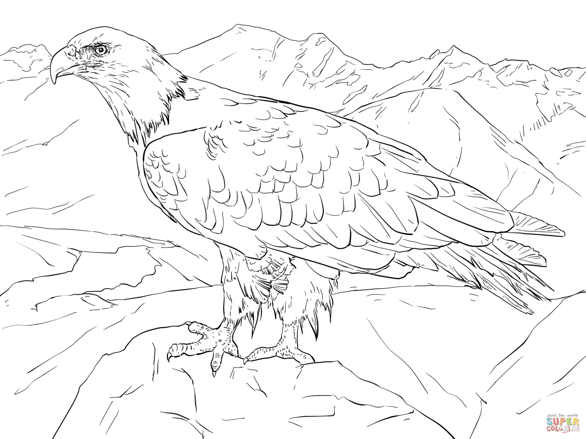 Bald Eagle From Alaska Coloring Page